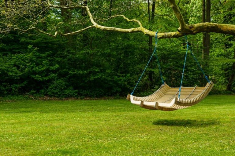 21 Best Tree Swing Ideas: Images and Inspiration 2020