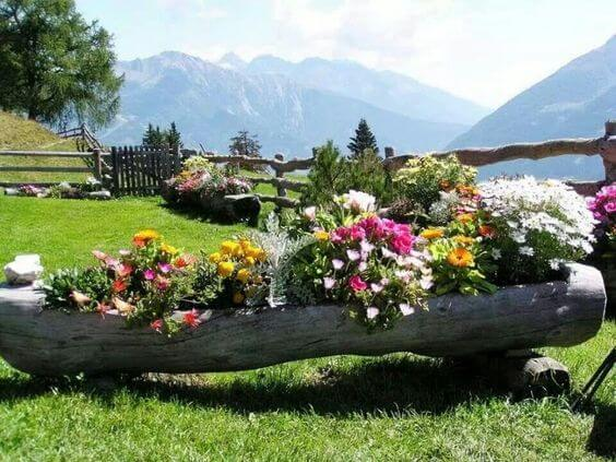 Grow a Mini Flower Bed Within