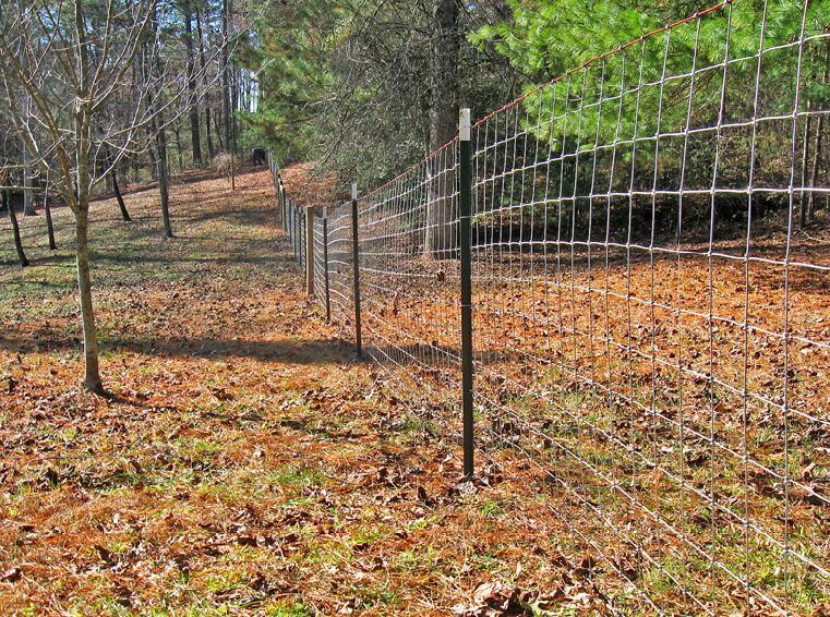 Post Goat Fence