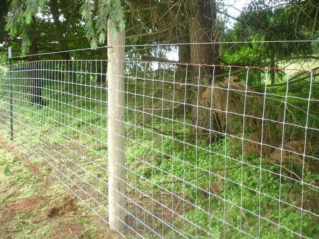 Wire Mesh Goat Fence