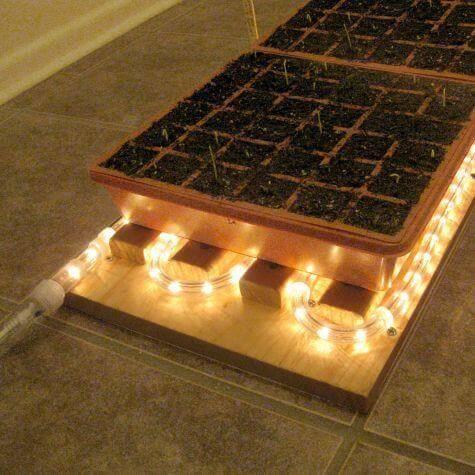 Garden Rope light