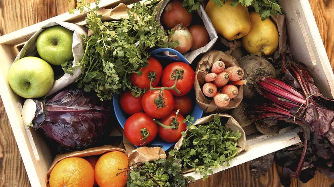 Types of Food – Do You Know All the Various Food Categories?