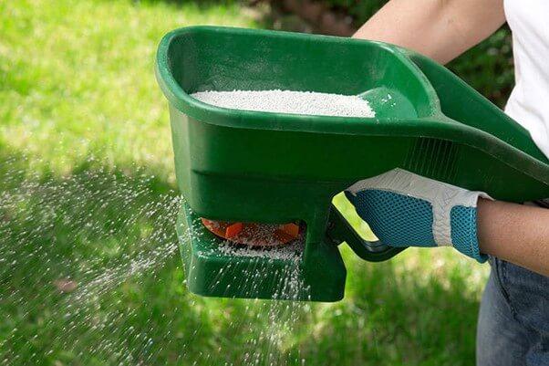 Fertilizer for New Grass