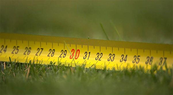 Lawn Dimensions