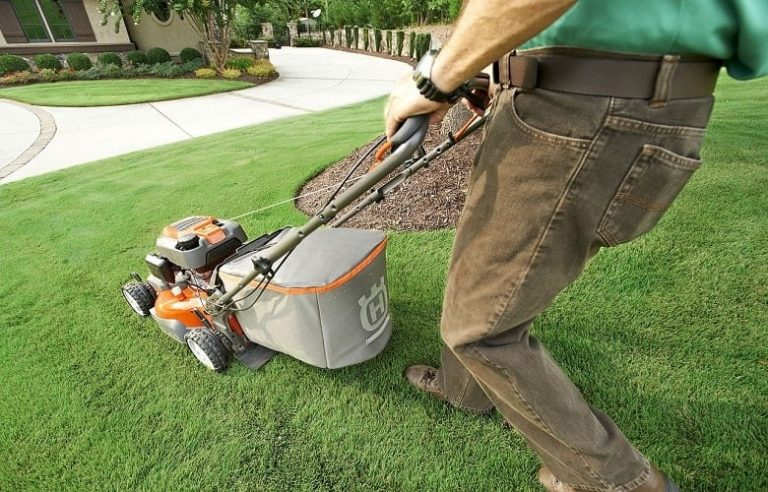 Lawn Mower Brands to Avoid (And What to Buy Instead)