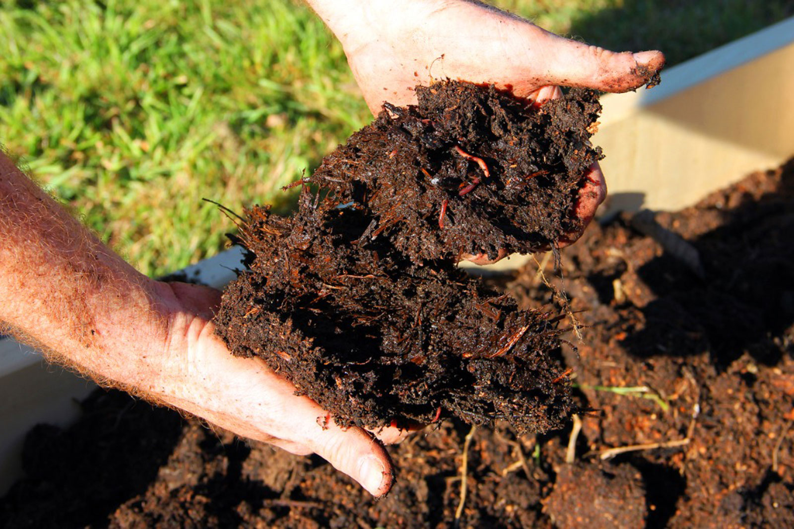 Add Compost to The Soil
