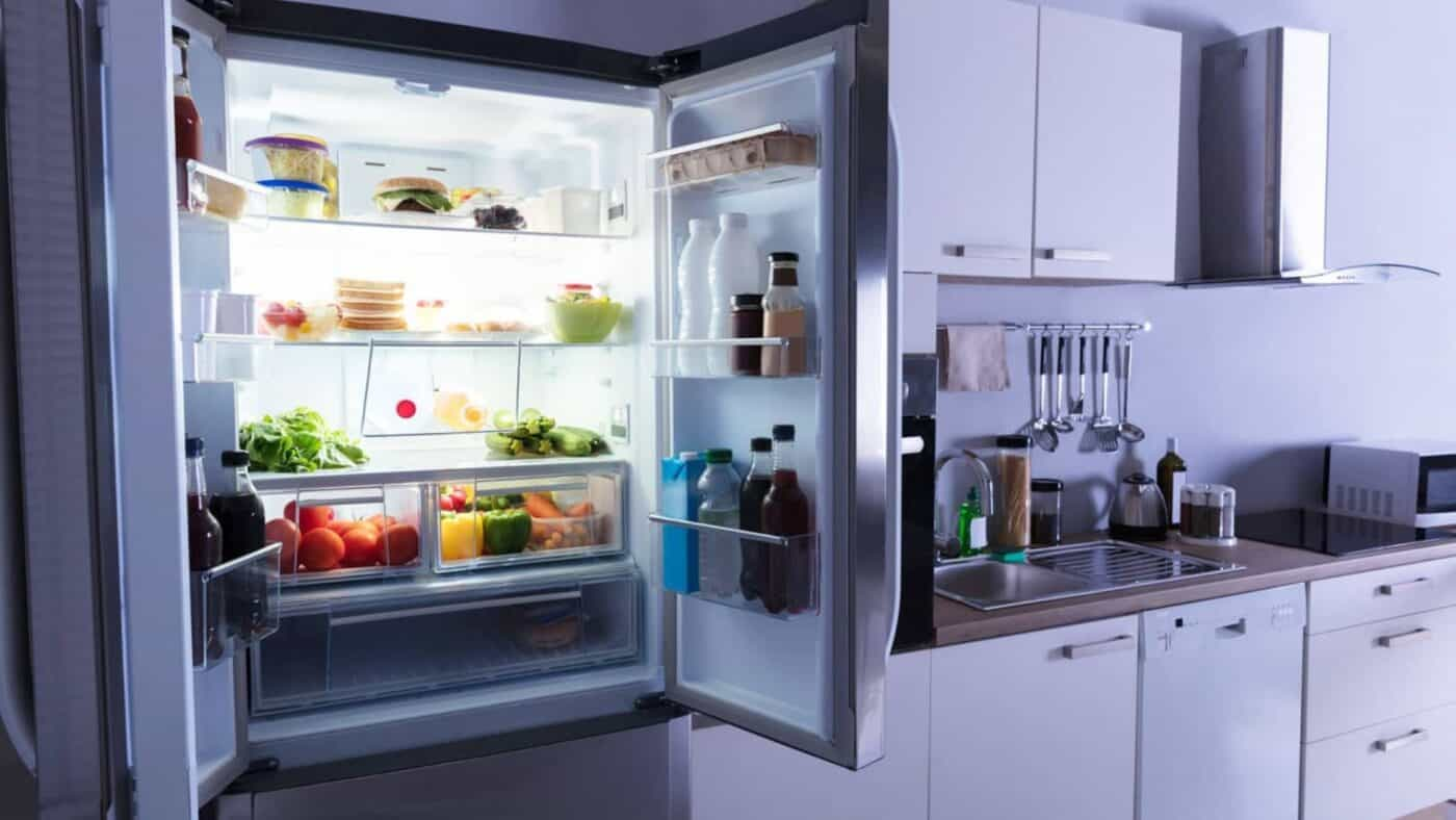 Best Propane Refrigerators for Keeping Fresh Food and Drinks