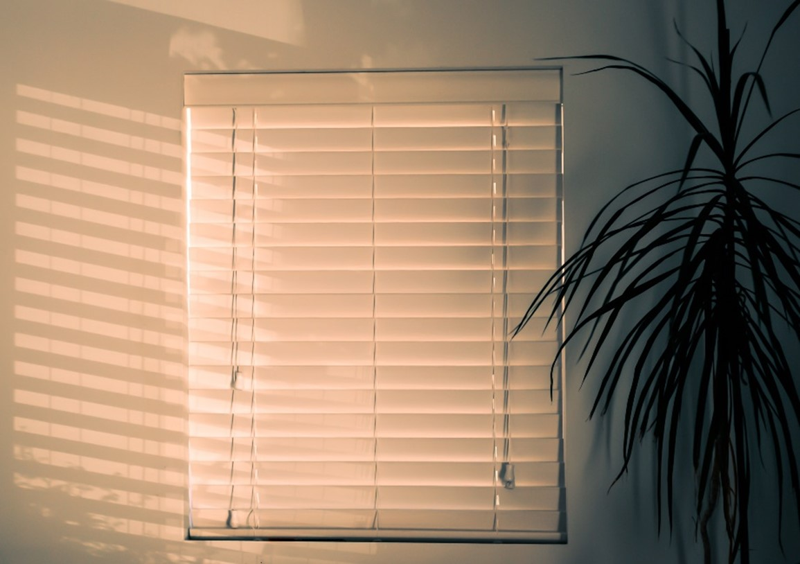 Blinds for New Generation