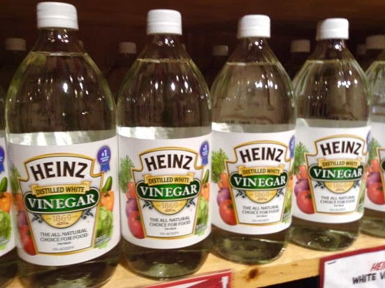 Can Vinegar Help to Keep Bees Away