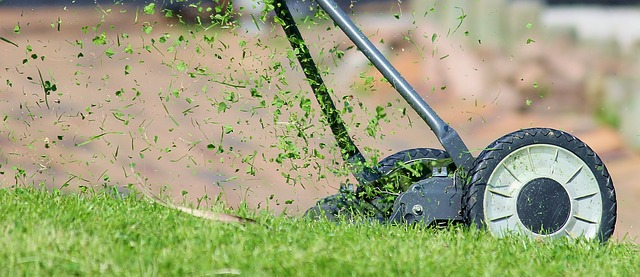 How Often to Mow Lawn Areas Spring, Summer, Fall Lawn Chick