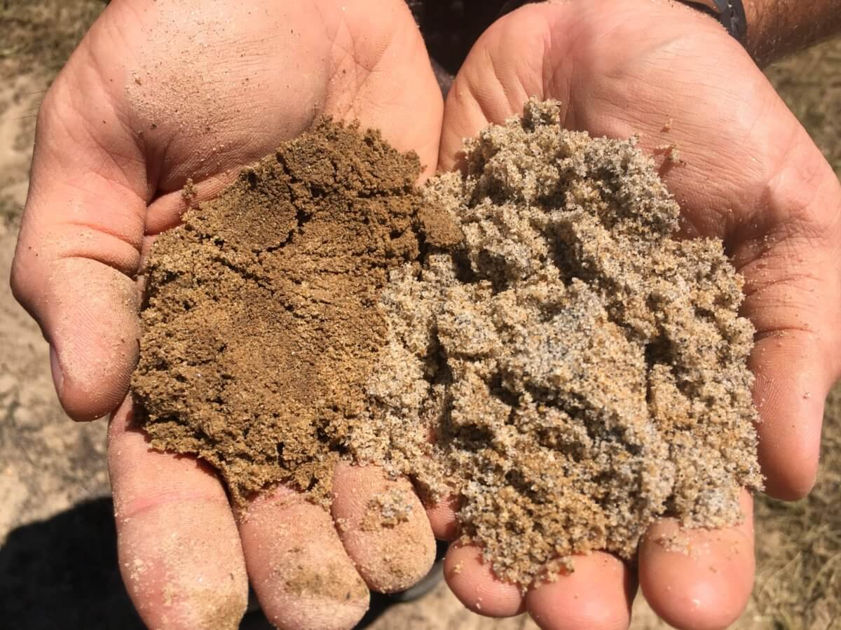 Sandy Soil Structure