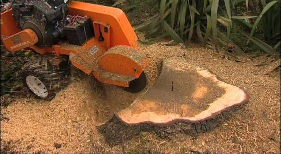 Use A Stump Grinder