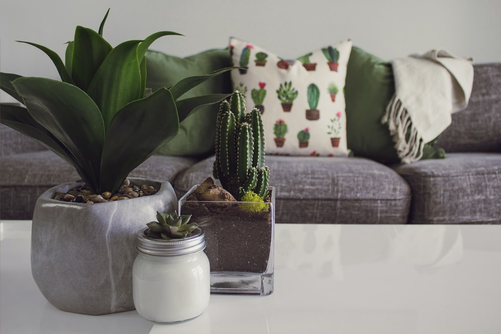 Decorating Your Sofa with Pillows