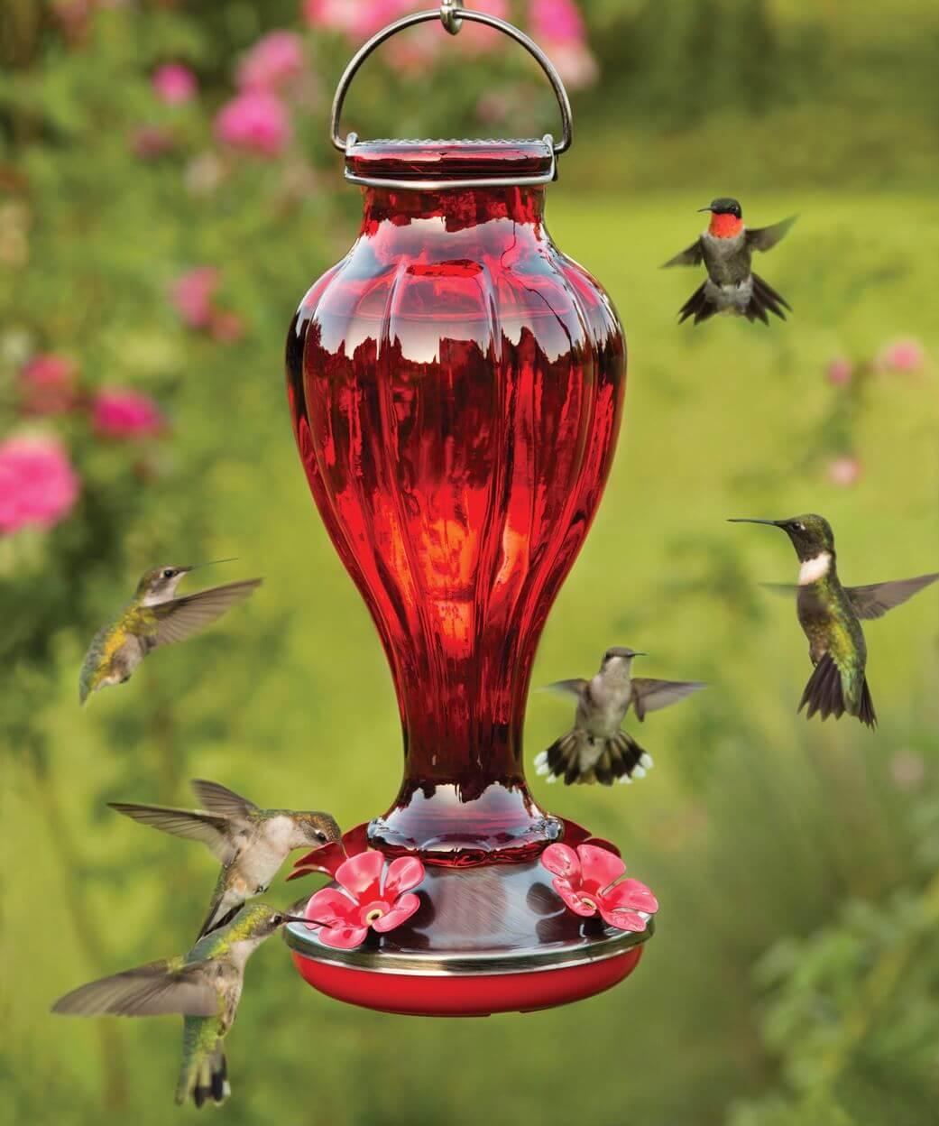 Bottom Fill Hummingbird Feeders