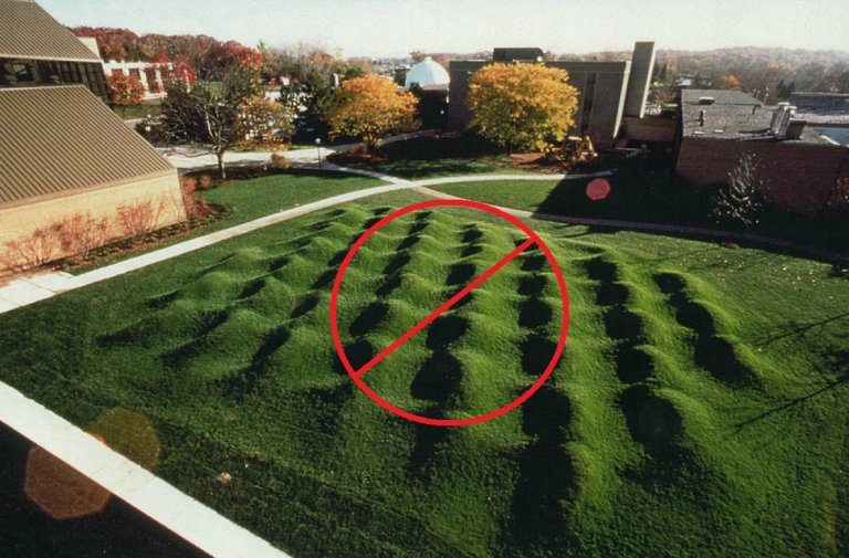 How Do You Level a Bumpy Lawn