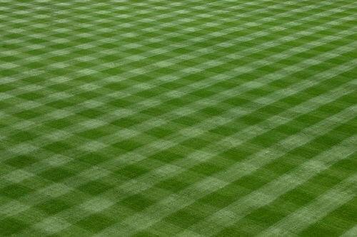 Lawn Mowed By Lawn Mower