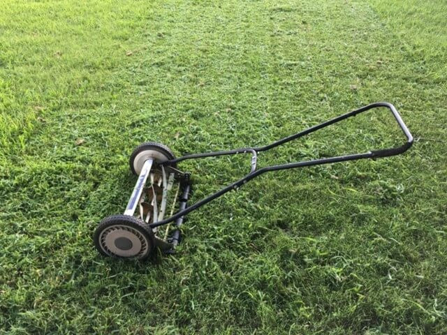 Push Mower vs Self Propelled Mower [Which to Choose]