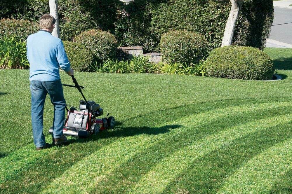 Striping Kit for Lawn Mower
